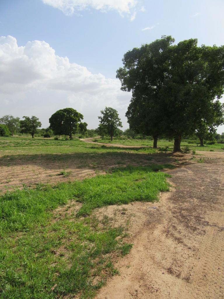 Terrain collège Yamba 2